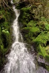 waterfall moss washington biking cycling iron horse trail pacific northwest photography